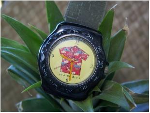 hawaii-watch