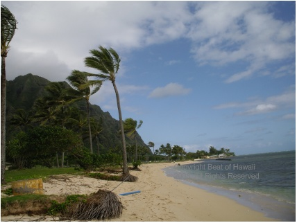 Miami To All Islands $400 (all-inclusive)
