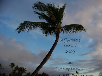 5 Money Saving Tips For Visiting Hawaii in 2009