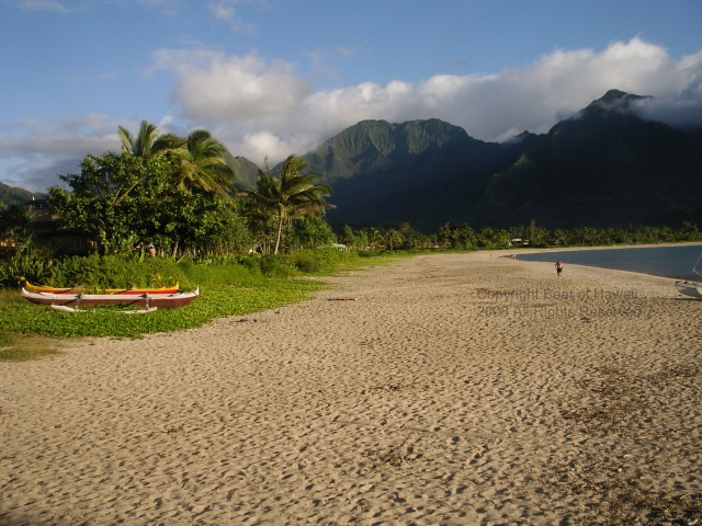 Dr. Beach And Beat of Hawaii Say Hanalei Bay is No. 1