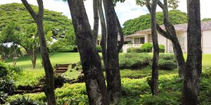 Lunch Honolulu – Picnic at The Spalding House