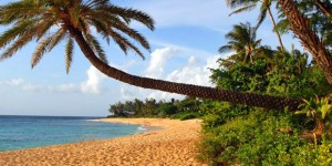 Before Hawaii Travel Resumes: Fix Highest US Virus Reproduction Rate