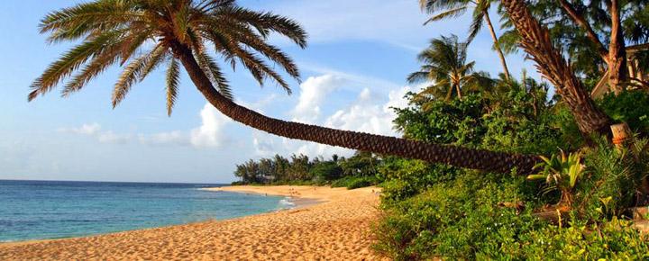 Hawaii Deals | Hawaii Air Quality