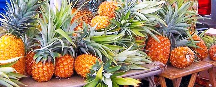 Farmers market Hawaii: Hanalei