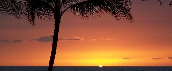 Dengue Fever - big island sunset