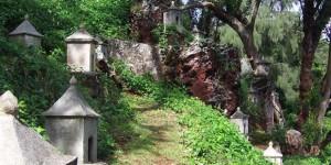 Kauai Events: Lawai Center Free Tours