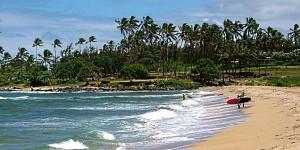 Hawaii Ocean Safety Tips