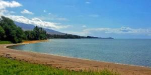 Hawaii Grocery Delivery Comes to Kauai, Maui and Honolulu