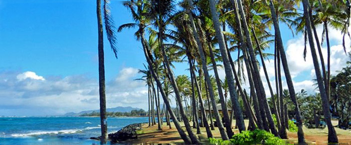 Ten Ways To Get The Most Out Of Your Hawaii Vacation