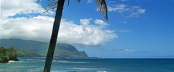 Hawaii Beach | Beat of Hawaii