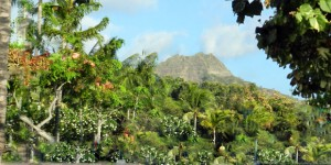Hawaii Deal | Dallas to Honolulu $275 Each Way All Inclusive