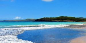 Hawaii Deals | New York/Honolulu $303 Each Way