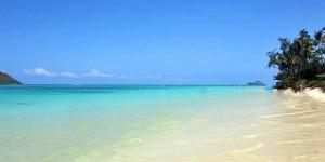 airline tickets to kauai hawaii cheap