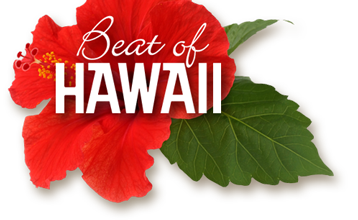 Seattle to Kona or Lihue This Summer $338 RT