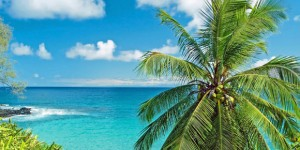 Airfare War: $139 Flights to Hawaii | All Islands