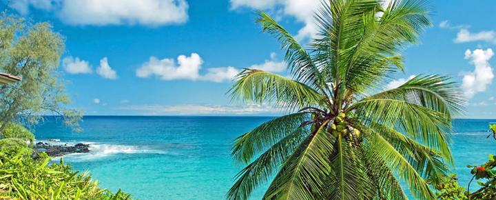 Airfare War: $139 Flights to Hawaii | All Islands