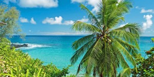 Cheap flights to Hawaii | Maui