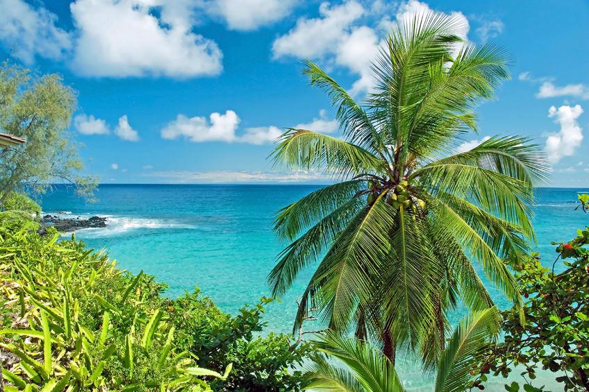 Cheap flights to Hawaii | Maui