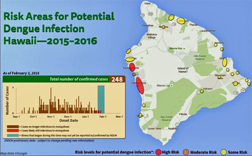 Avoiding Dengue Fever in Hawaii