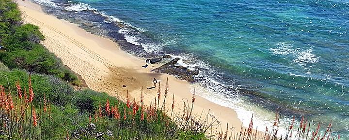 Hawaii Vacations - Diamond Head Oahu