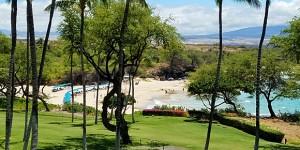 Essential Hawaii Travel Q&A   More New Rules + NO SafeTravels App.