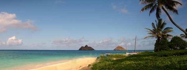 Hawaii helicopter tours and crashes