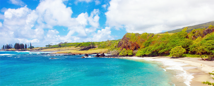 Win A Free Trip to Hawaii Sweepstakes