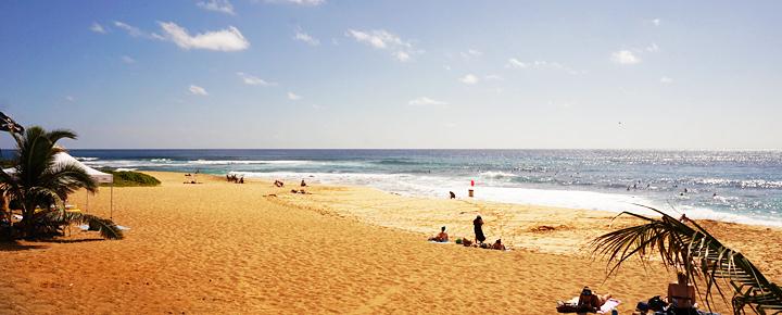 Still Jonesing For Hawaii in 2021? Here's Where to Start Now.