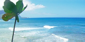 Alaska Airlines Hawaii Deals