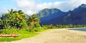 New Routes, All Islands | Hawaii Deals $176+