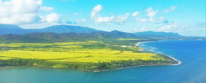 Sale on Hawaiian Airlines Flights