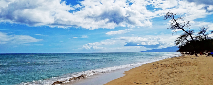 Hawaii Vacation Deals   Maui Beaches
