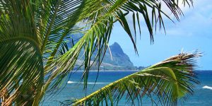 Flights to Kauai From Northern/Southern California $397RT