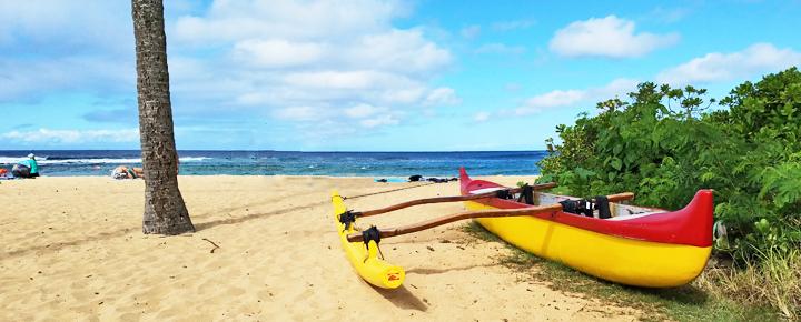 Hawaii tourism update