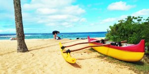 Chicago, Denver, DC, Houston, New York | Hawaii Deals $177