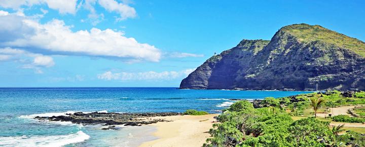 Trusting Hawaii Travel Agents: TrustA Story Of Stolen
