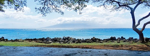 Black Friday Hawaii Deals