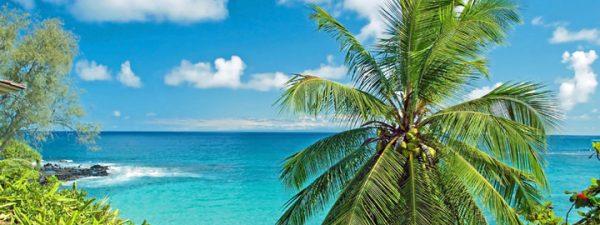 Win a Free Trip to Hawaii Sweepstakes | Beat of Hawaii