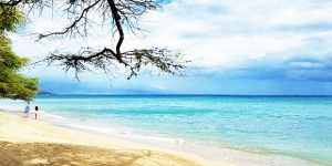 From $19 Today | Hawaii Travel Deals Interisland