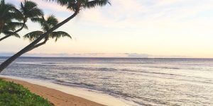 Flights to Hawaii From California, New York, Arizona, and More $163-$188 | Peak Summer