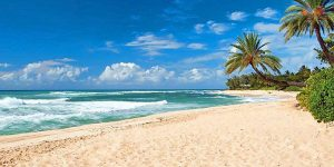Hawaiian Airlines Flights From $166