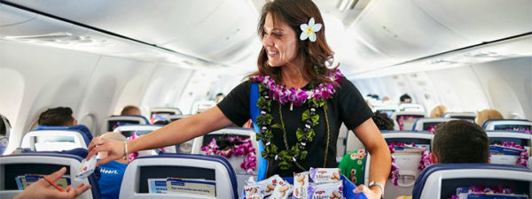 Just Updated Guide | Basic Economy to Hawaii