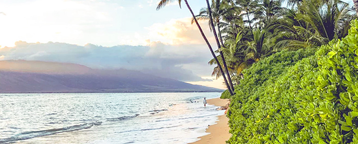 The Best Hawaii Deals Ever Among 2020 Predictions