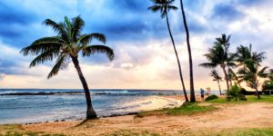 Hawaiian Airlines' Routes Cancelled Until June