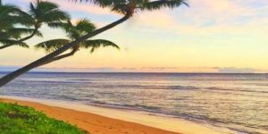 Hawaii in The News: Reopening Soon? What About Travel?
