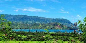 Wrong Data and Missteps May Further Delay Hawaii Travel