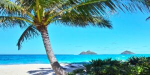 Hawaii Vacation Demand Exceeds Capacity | What You Need To Do