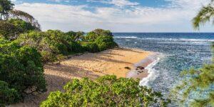 Zuckerberg Latest: 600 Acres on Kauai At Larsens Beach