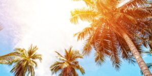 TSA Reverses Rule For Your Hawaiian Sunscreen + Products You Picked