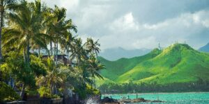 2022 Jonesing For Hawaii   Here's Where to Start Now